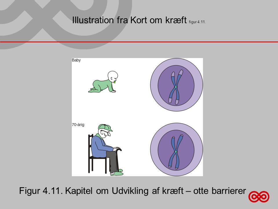 Illustration fra Kort om kræft figur 4.11.