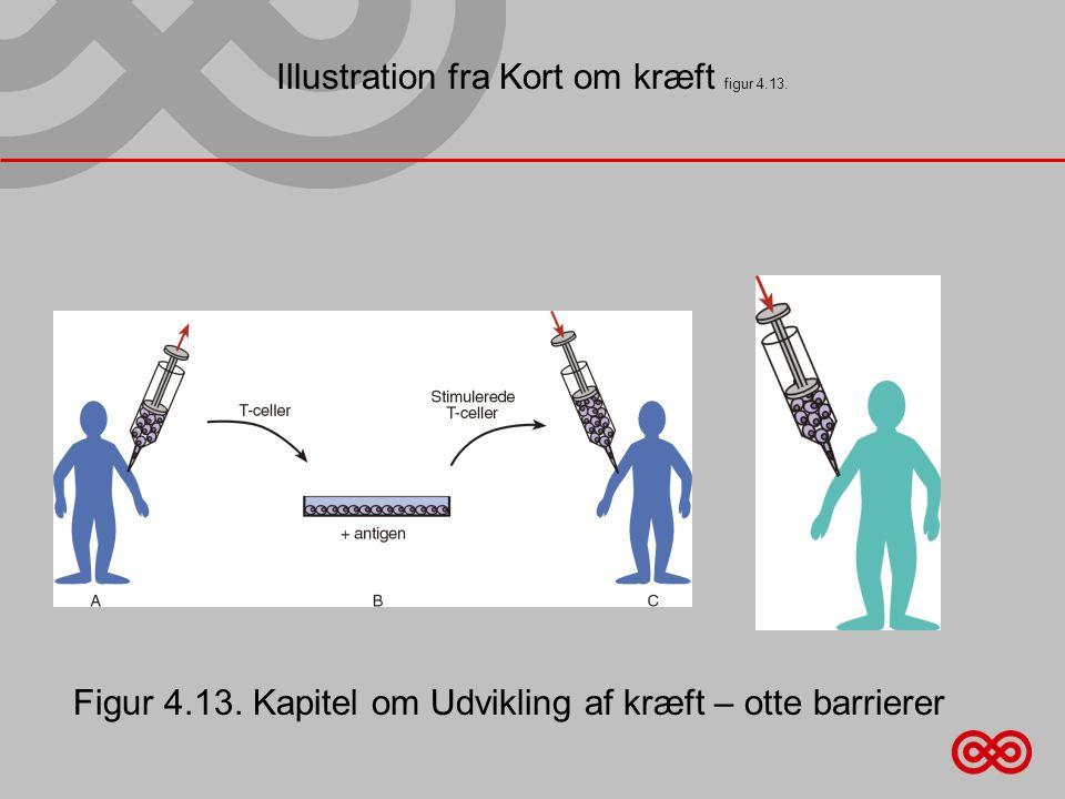 Illustration fra Kort om kræft figur 4.13.