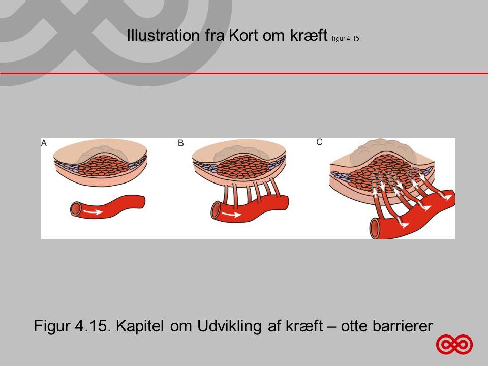 Illustration fra Kort om kræft figur 4.15.