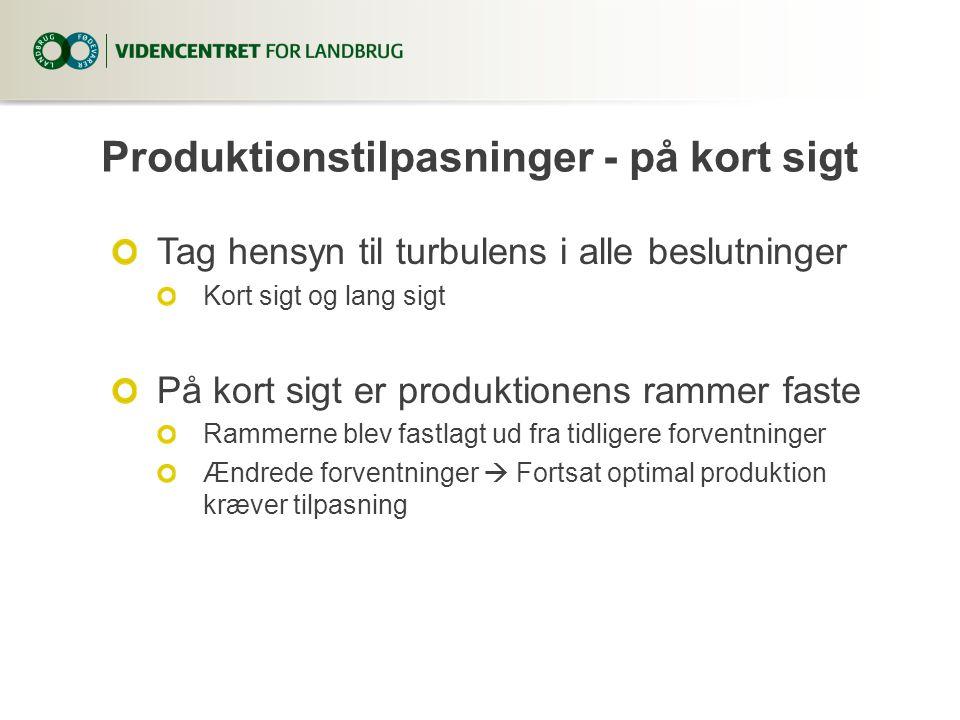 Produktionstilpasninger - på kort sigt