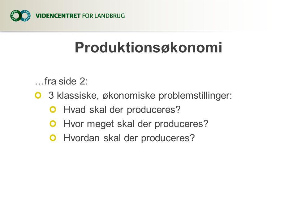 Produktionsøkonomi …fra side 2: