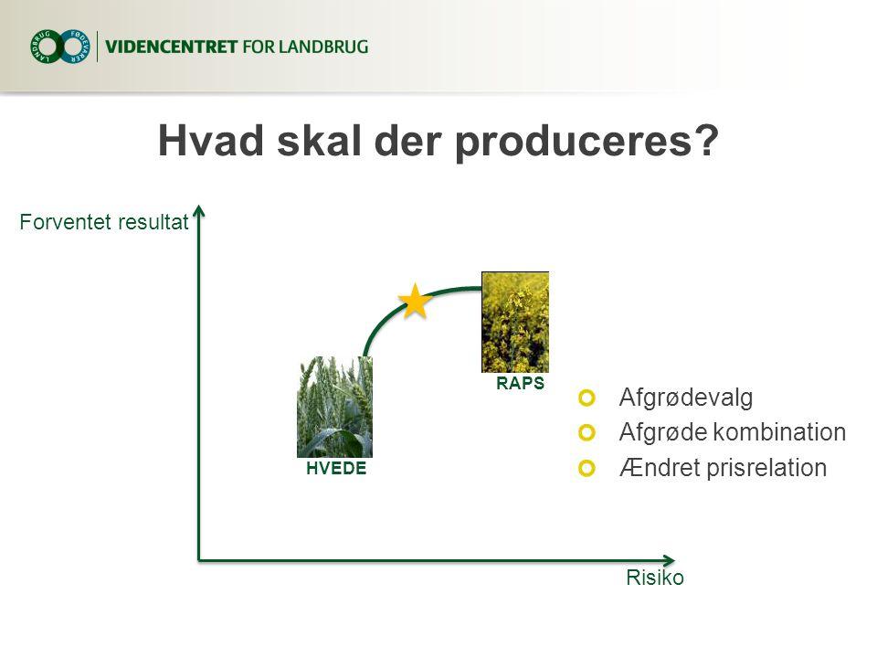 Hvad skal der produceres