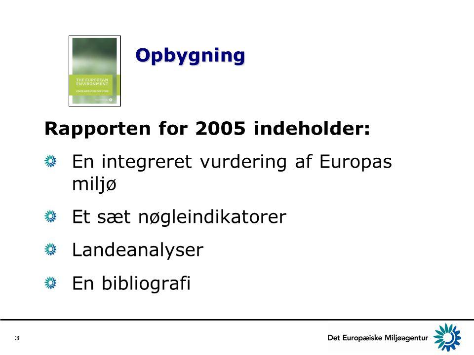 Rapporten for 2005 indeholder: