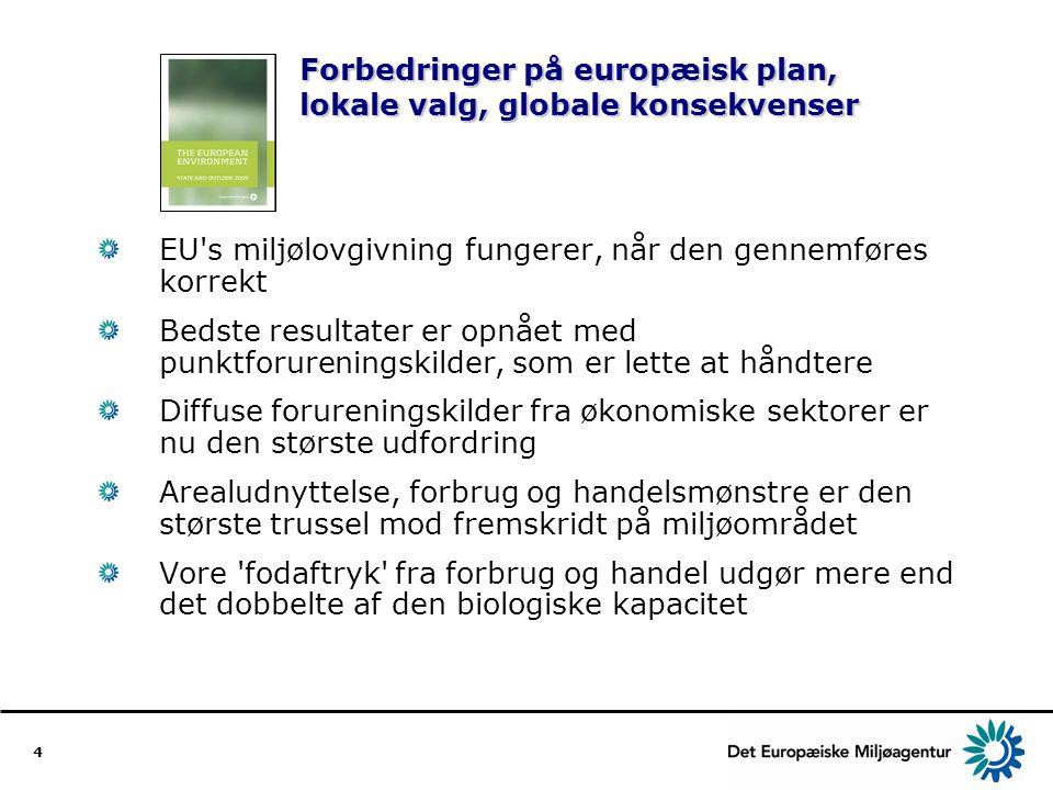 Forbedringer på europæisk plan, lokale valg, globale konsekvenser