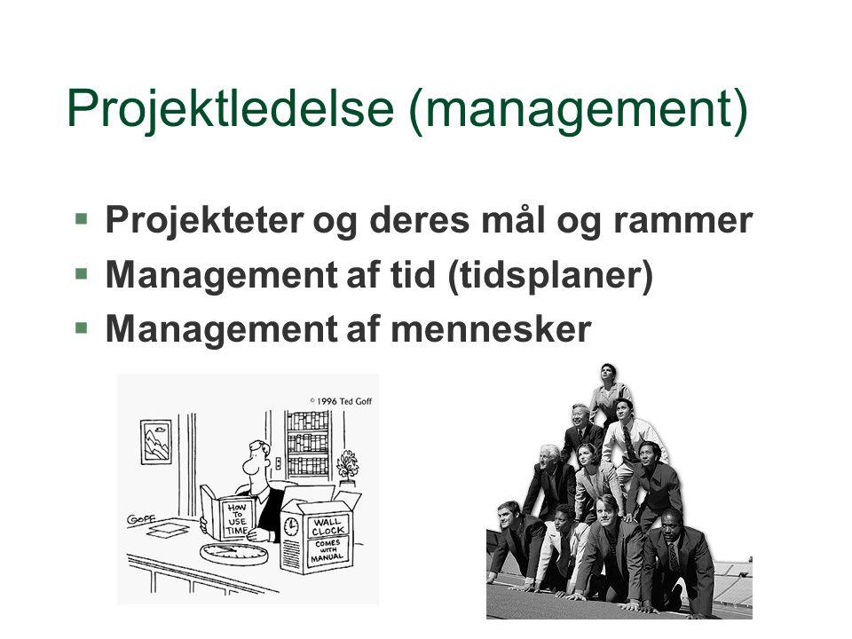 Projektledelse (management)