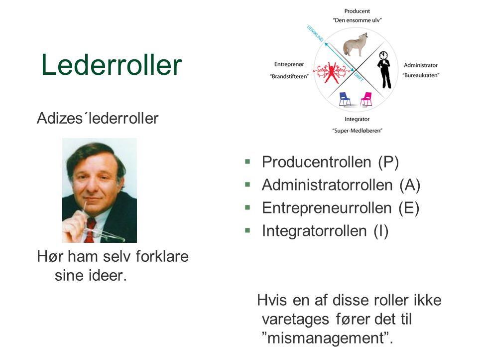 Lederroller Adizes´lederroller Producentrollen (P)