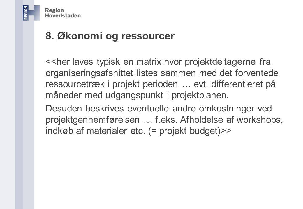 8. Økonomi og ressourcer