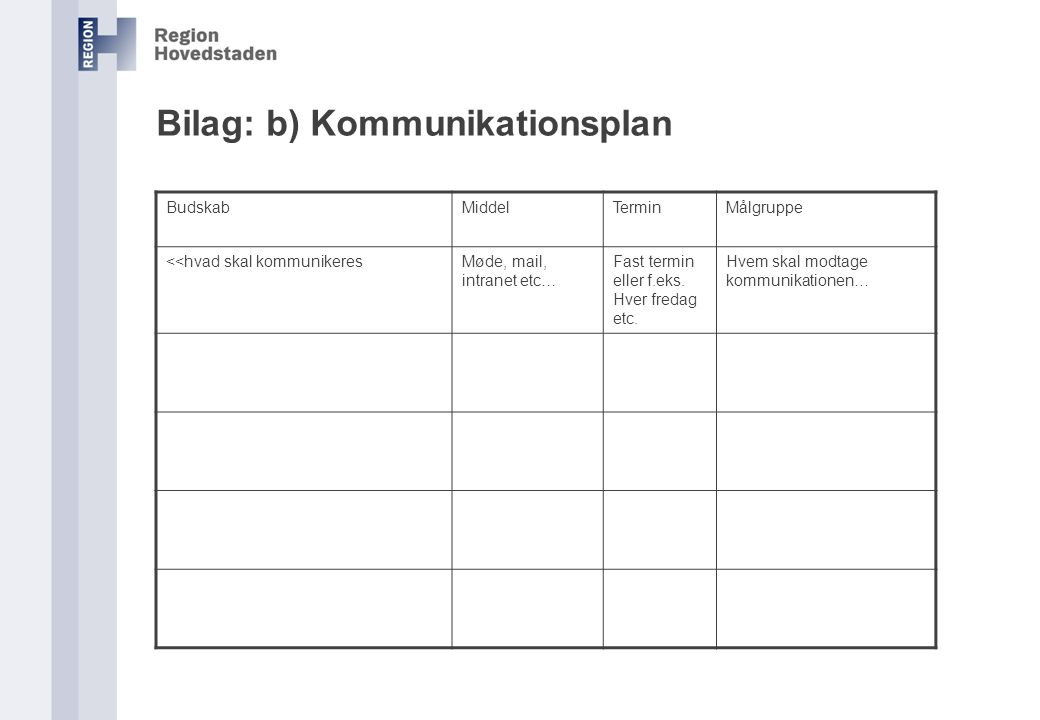 Bilag: b) Kommunikationsplan
