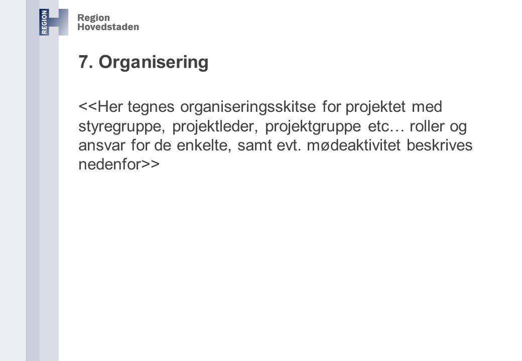 7. Organisering