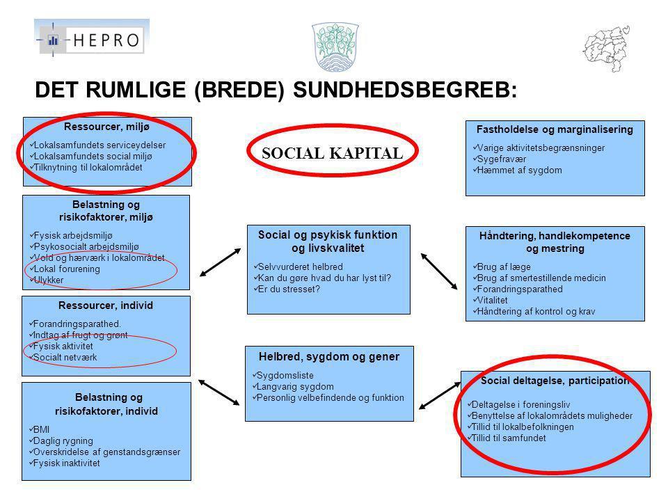 DET RUMLIGE (BREDE) SUNDHEDSBEGREB: