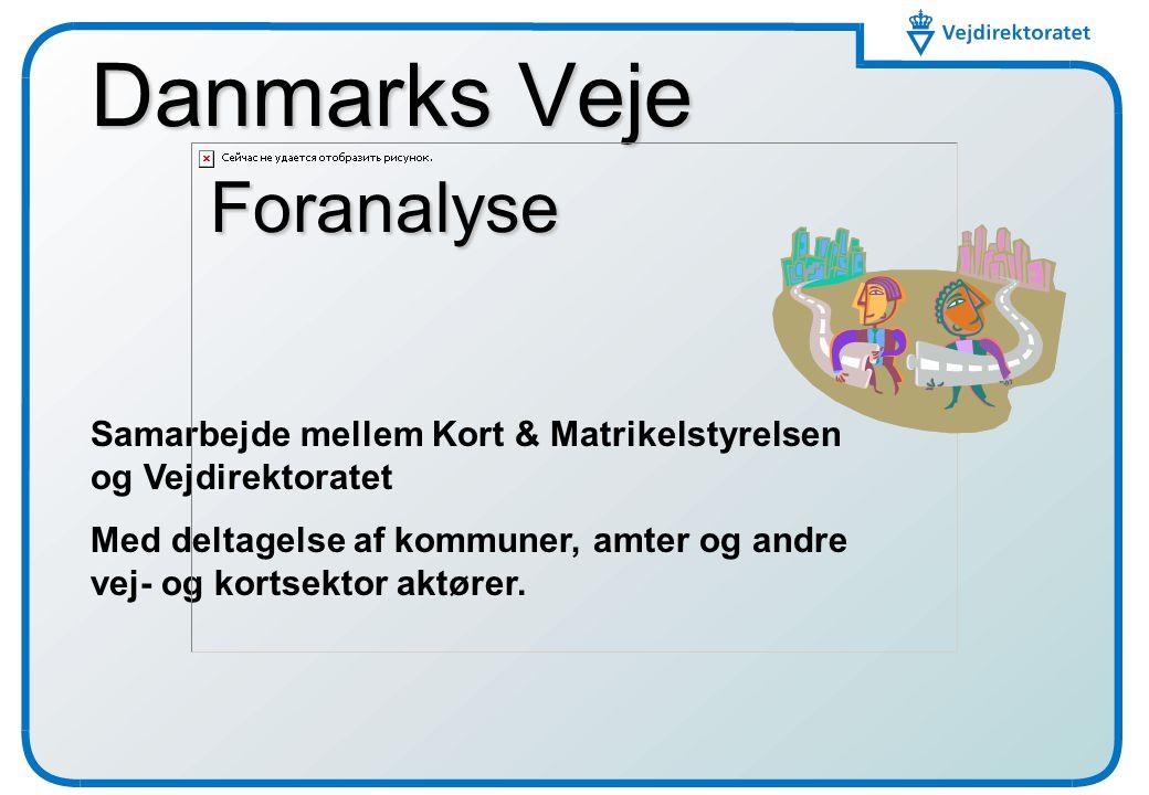 Danmarks Veje Foranalyse
