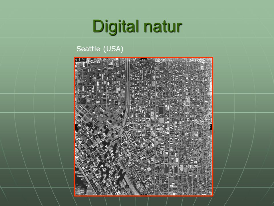 Digital natur Seattle (USA)