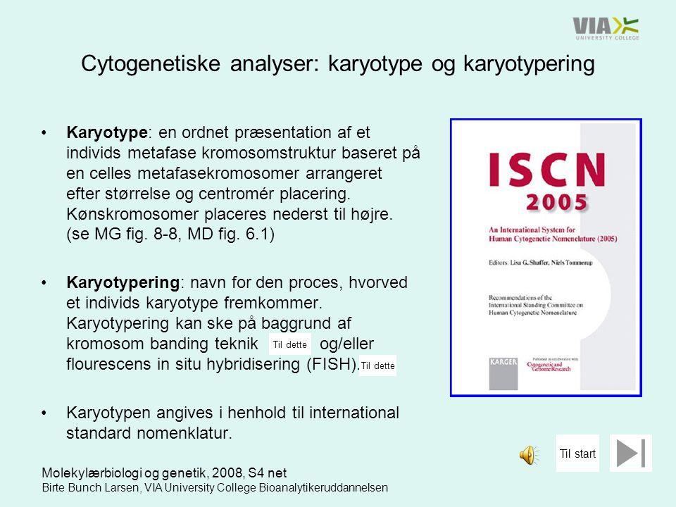 Cytogenetiske analyser: karyotype og karyotypering
