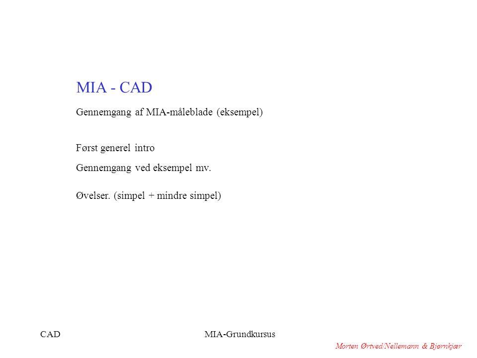 MIA - CAD Gennemgang af MIA-måleblade (eksempel) Først generel intro
