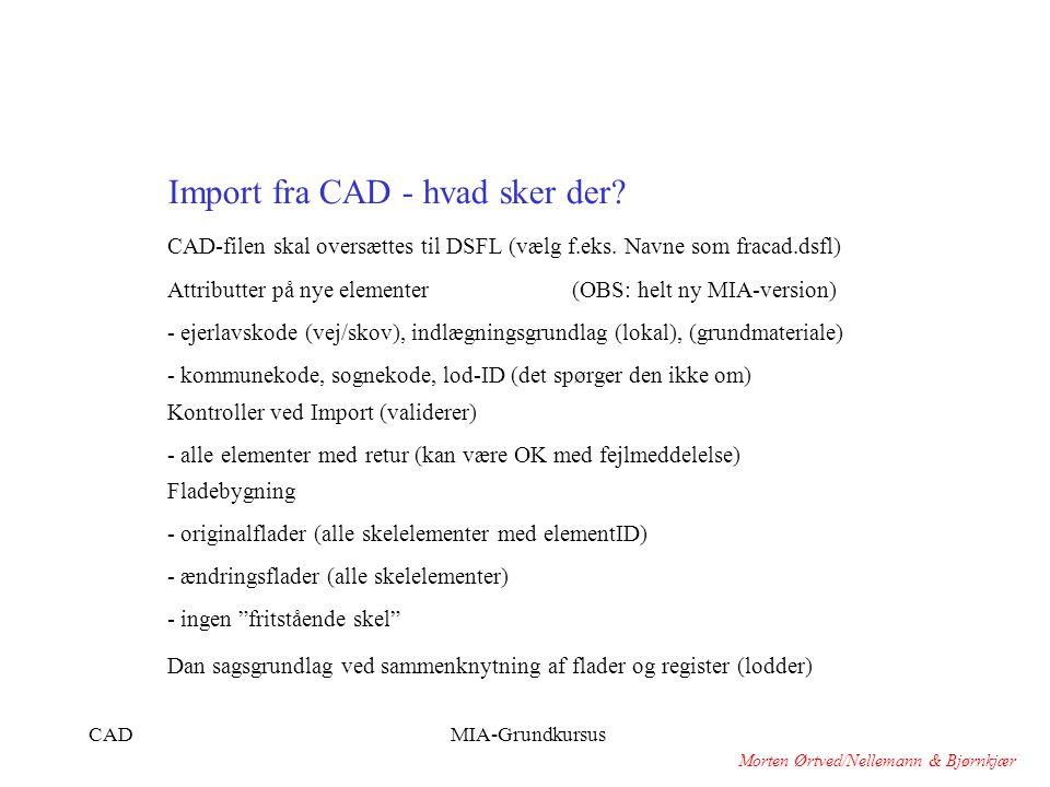 Import fra CAD - hvad sker der