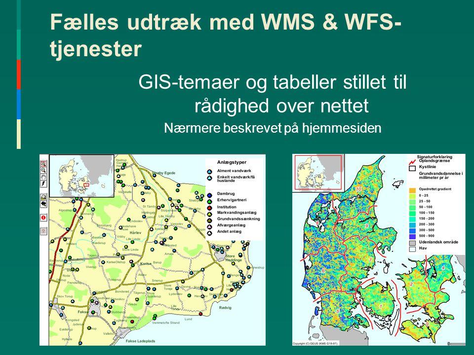 Fælles udtræk med WMS & WFS-tjenester
