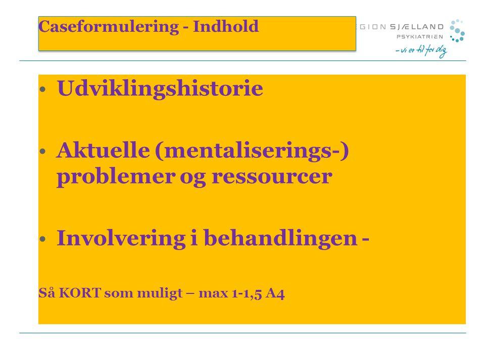 Caseformulering - Indhold