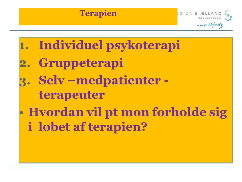 Individuel psykoterapi Gruppeterapi Selv –medpatienter - terapeuter