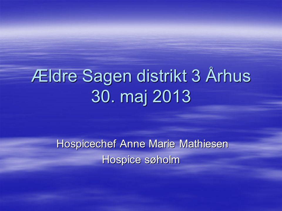 Ældre Sagen distrikt 3 Århus 30. maj 2013