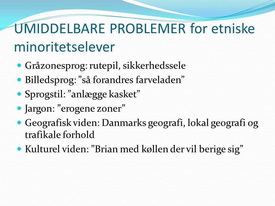 UMIDDELBARE PROBLEMER for etniske minoritetselever