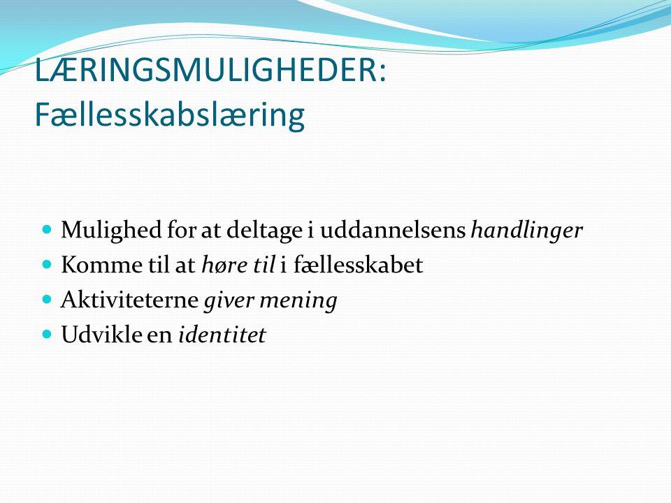 LÆRINGSMULIGHEDER: Fællesskabslæring