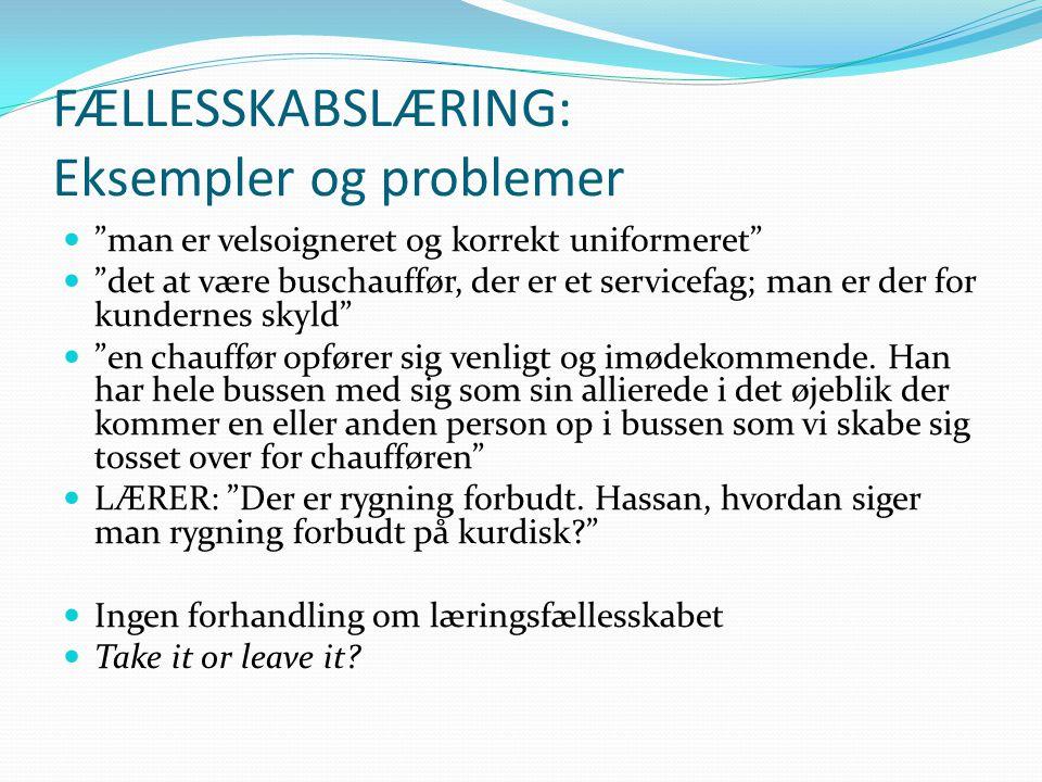 FÆLLESSKABSLÆRING: Eksempler og problemer