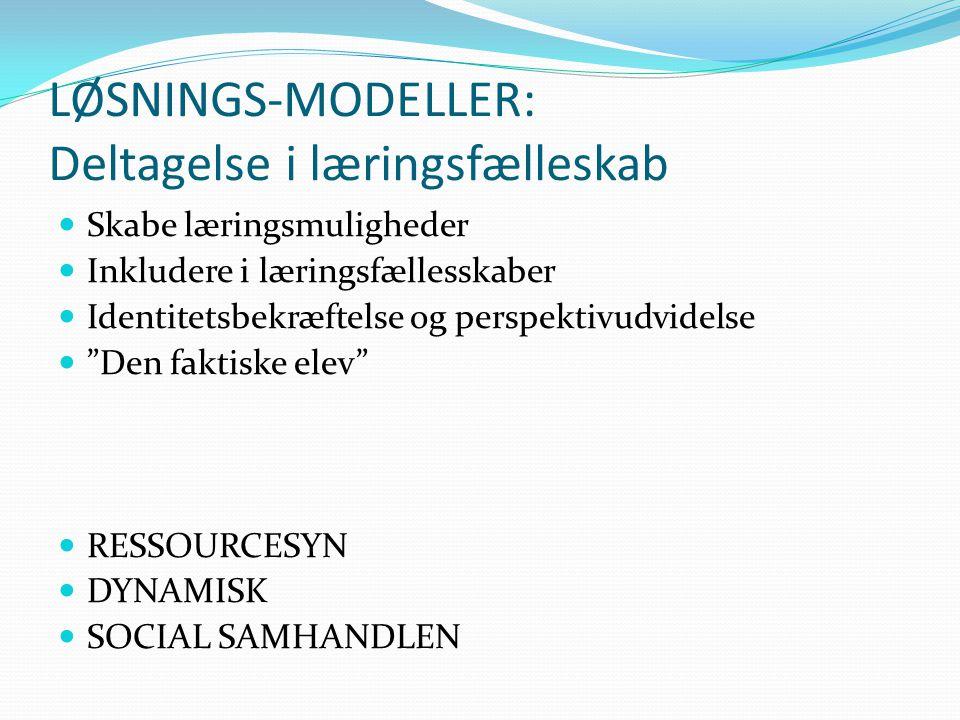 LØSNINGS-MODELLER: Deltagelse i læringsfælleskab