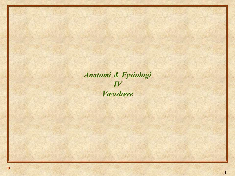 Anatomi & Fysiologi IV Vævslære
