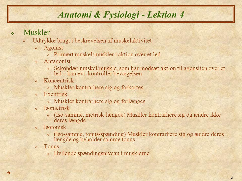 Anatomi & Fysiologi - Lektion 4