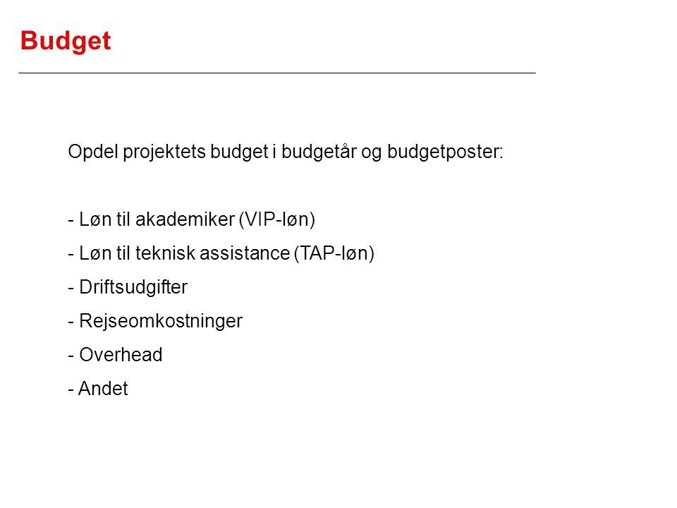 Budget Opdel projektets budget i budgetår og budgetposter:
