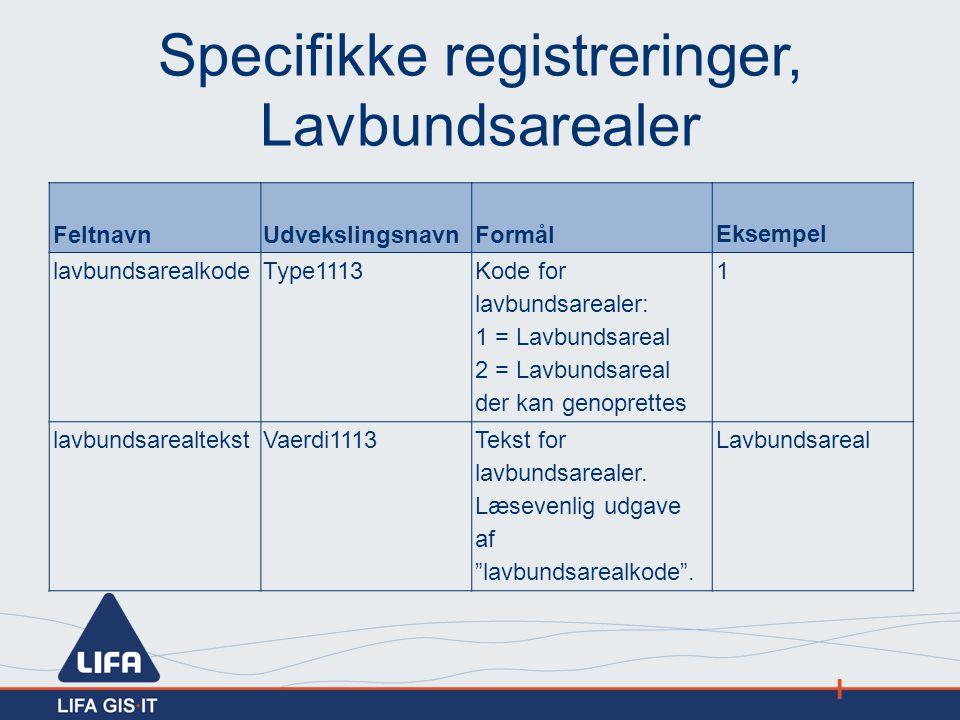 Specifikke registreringer, Lavbundsarealer