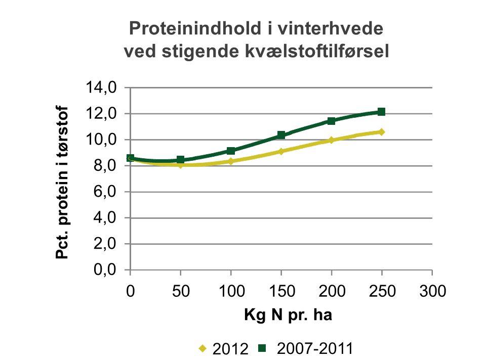 Proteinindhold i vinterhvede ved stigende kvælstoftilførsel