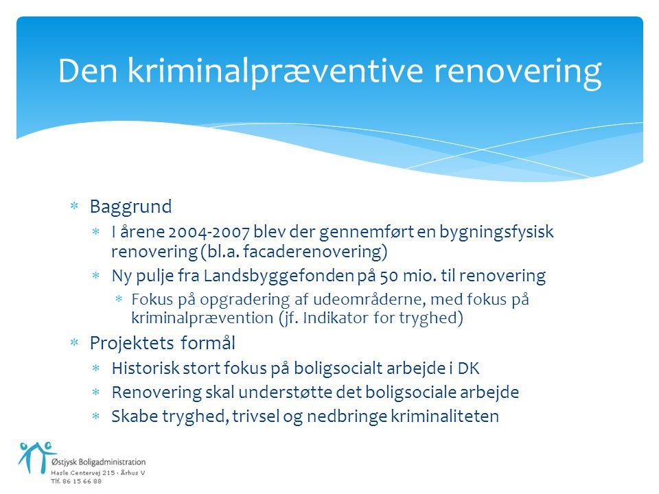 Den kriminalpræventive renovering