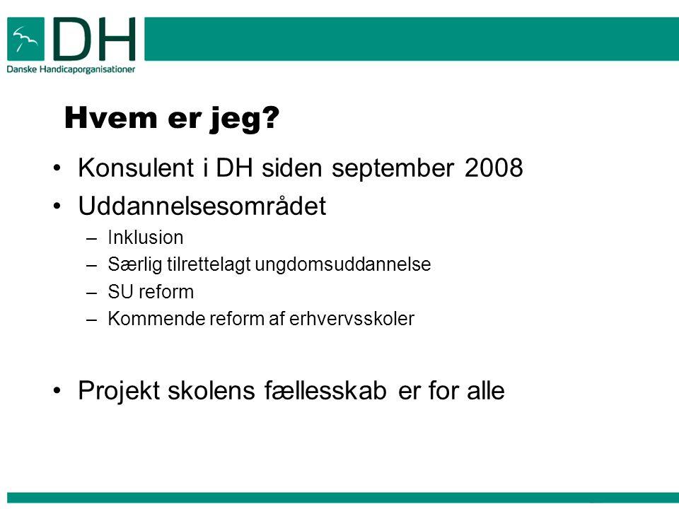 Hvem er jeg Konsulent i DH siden september 2008 Uddannelsesområdet