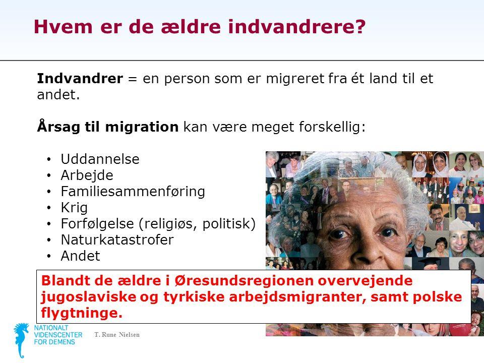 Hvem er de ældre indvandrere