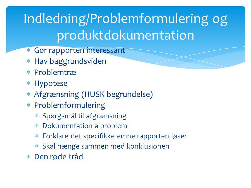 Indledning/Problemformulering og produktdokumentation