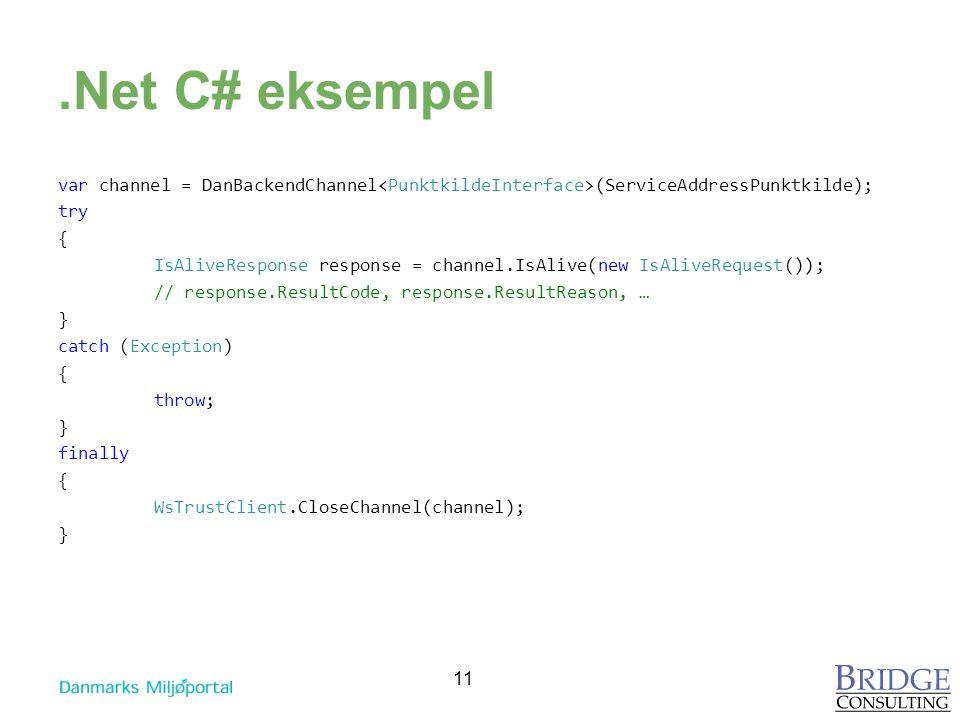 .Net C# eksempel