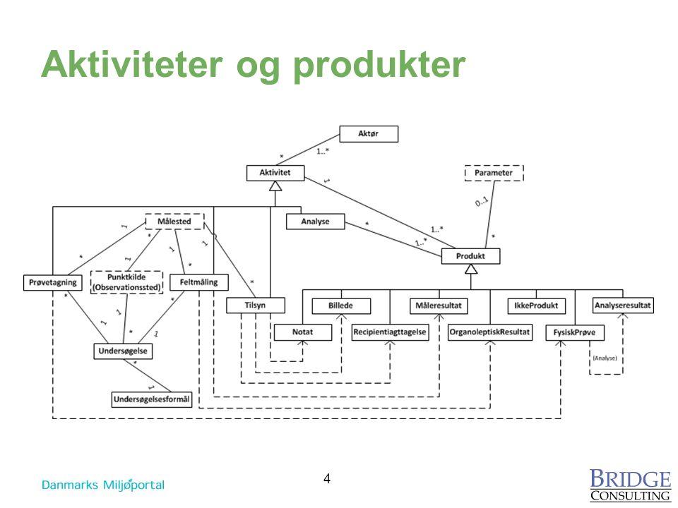 Aktiviteter og produkter