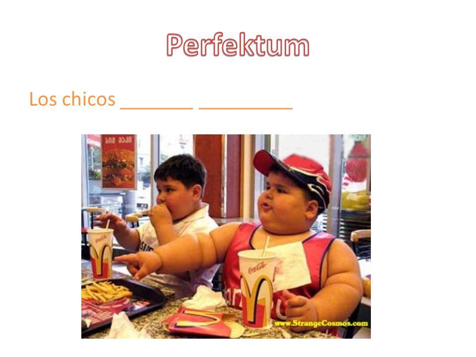 Perfektum Los chicos _______ _________
