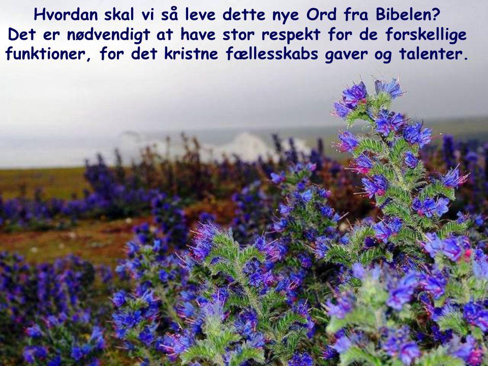 Hvordan skal vi så leve dette nye Ord fra Bibelen