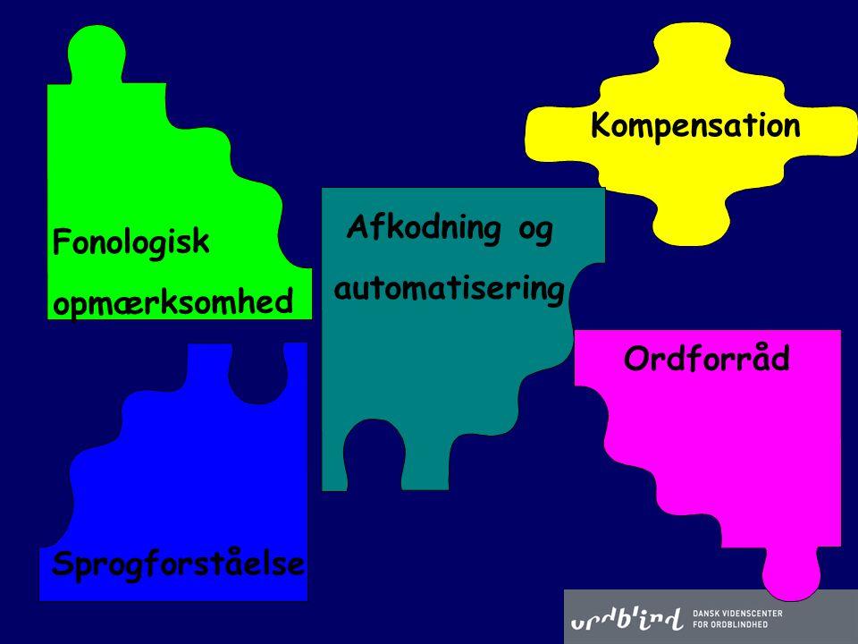 Kompensation Afkodning og automatisering Ordforråd