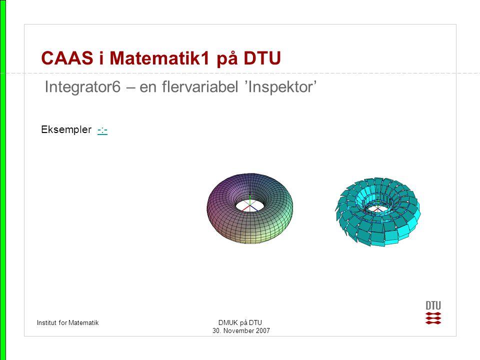 CAAS i Matematik1 på DTU Integrator6 – en flervariabel 'Inspektor'