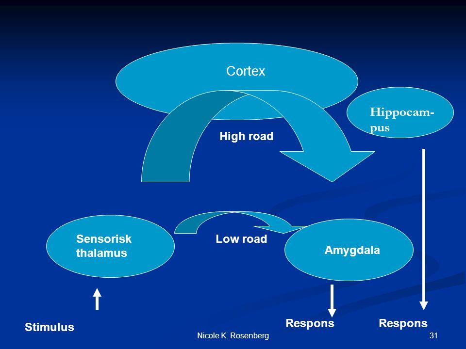 Cortex Hippocam-pus High road Sensorisk thalamus Low road Amygdala