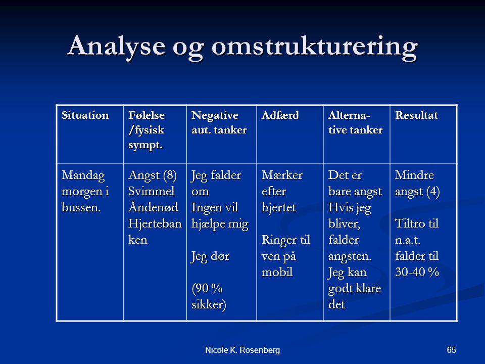 Analyse og omstrukturering