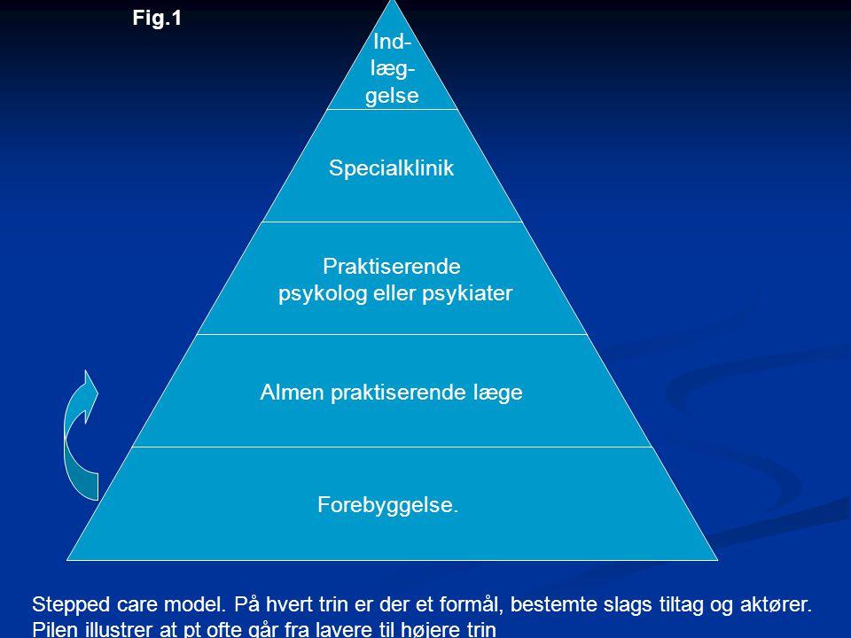 Fig.1 Stepped care model. På hvert trin er der et formål, bestemte slags tiltag og aktører.