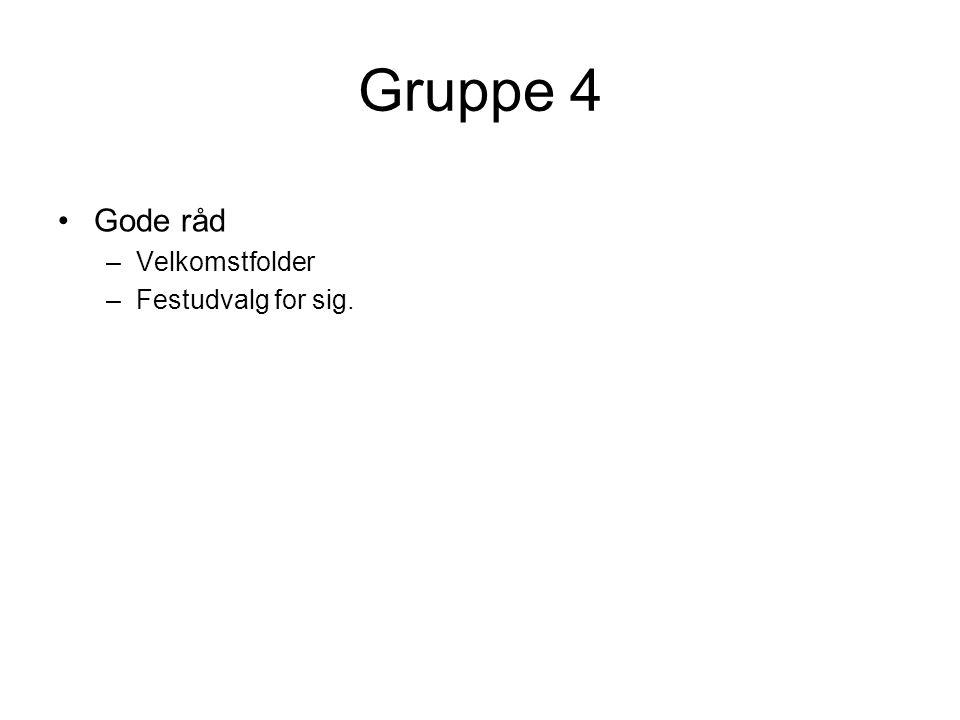 Gruppe 4 Gode råd Velkomstfolder Festudvalg for sig.