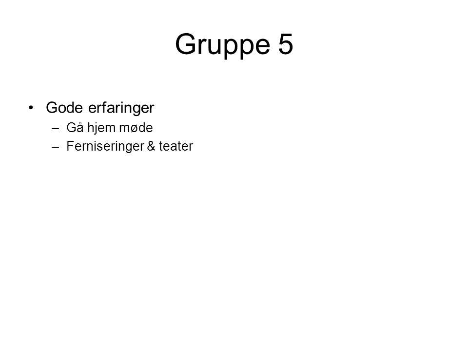 Gruppe 5 Gode erfaringer Gå hjem møde Ferniseringer & teater