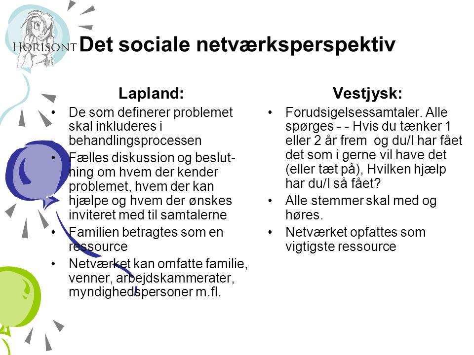 Det sociale netværksperspektiv