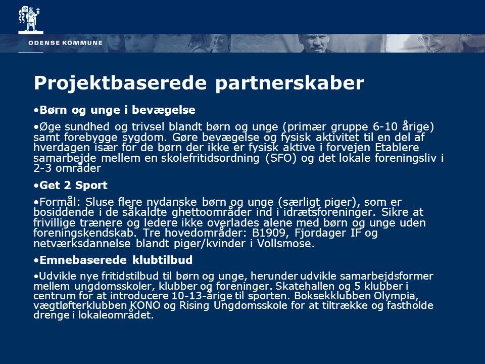 Projektbaserede partnerskaber