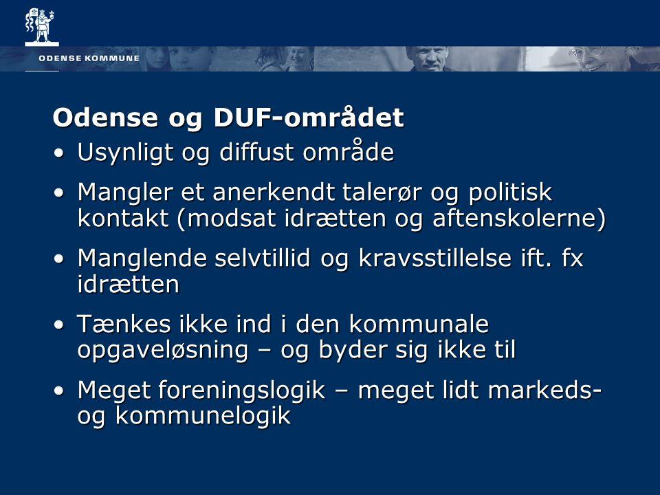 Odense og DUF-området Usynligt og diffust område